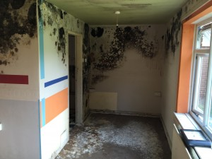 Mould Remediation in Macclesfield